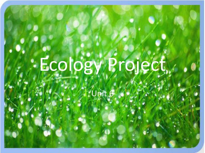 ecology project n.