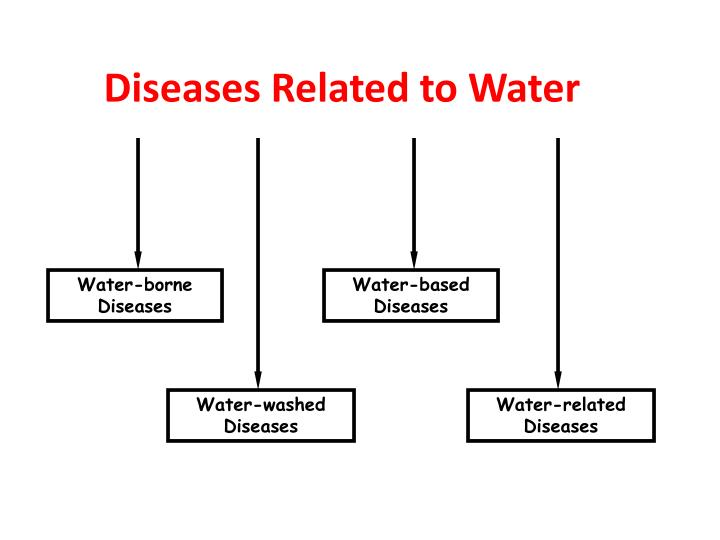 Diseases Related to Water