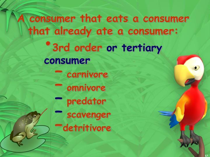 A consumer that eats a consumer that already ate a consumer: