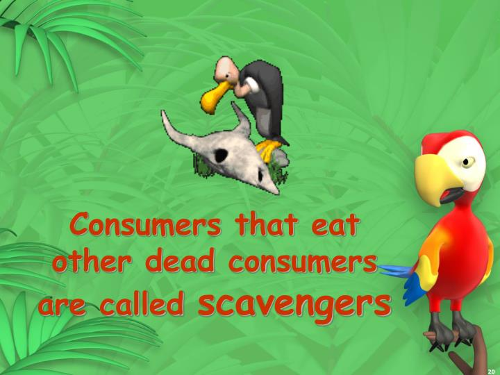 Consumers that eat other dead consumers are called