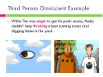 third person omniscient example
