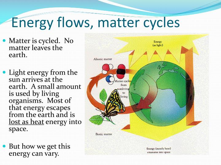 Energy flows, matter cycles