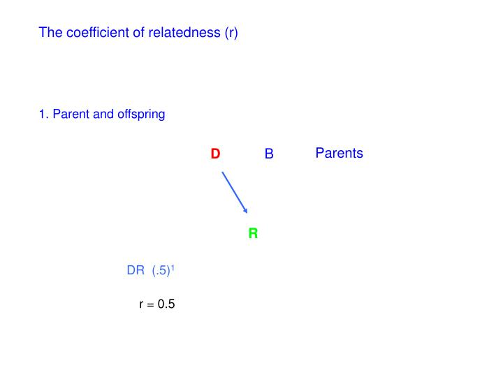 The coefficient of relatedness (r)