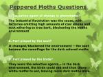 peppered moths questions