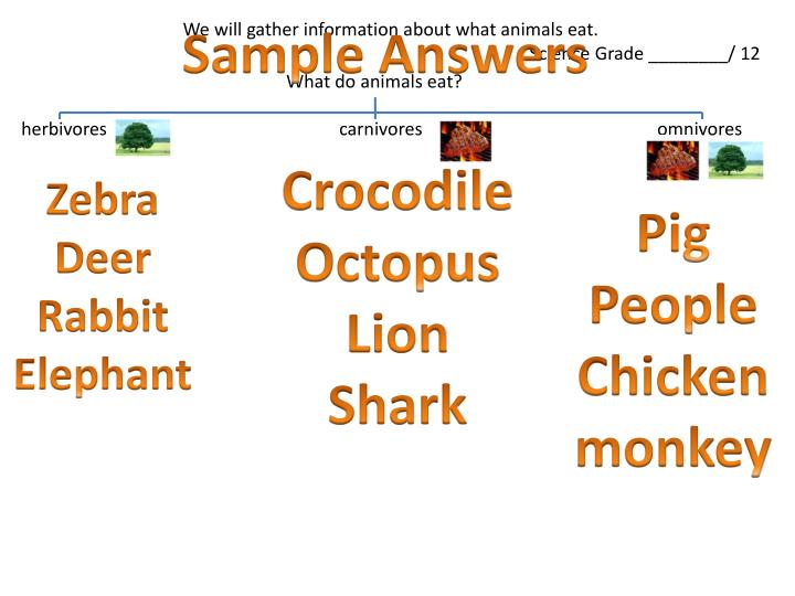 Sample Answers