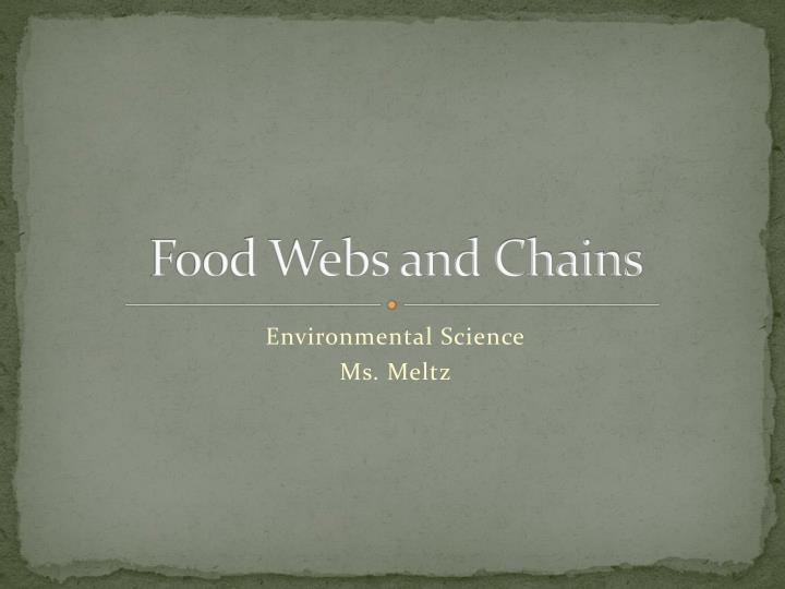 Food webs and chains