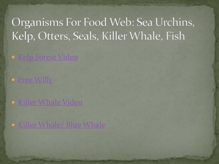 Organisms For Food Web: Sea Urchins, Kelp, Otters, Seals, Killer Whale, Fish
