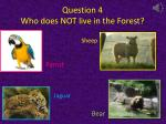 question 4 who does not live in the forest