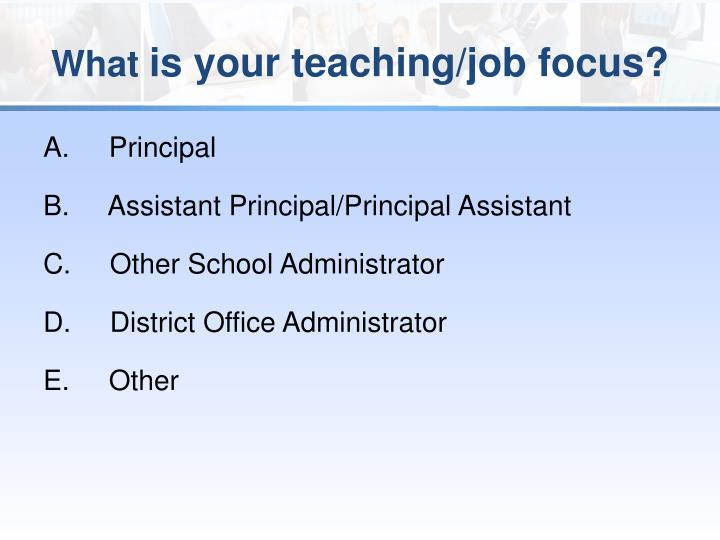 What is your teaching job focus