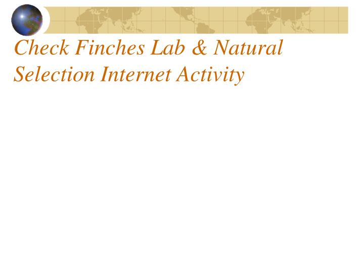 Check finches lab natural selection internet activity