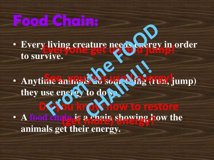 Food chain1