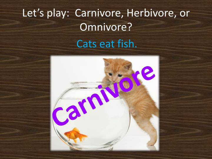 Let's play:  Carnivore, Herbivore, or Omnivore?