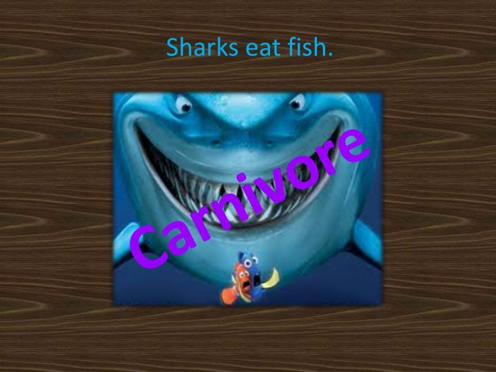 Sharks eat fish.
