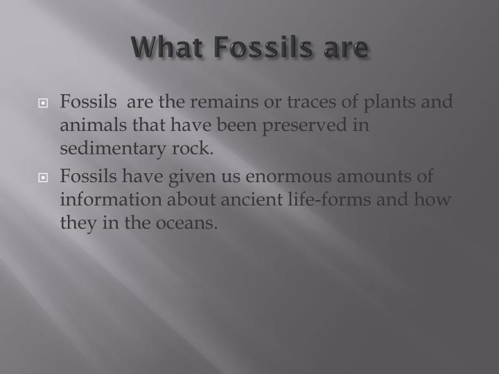 What Fossils are