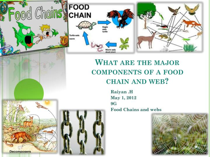 Thesis cover page mla research