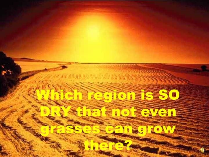 Which region is SO DRY that not even grasses can grow there?