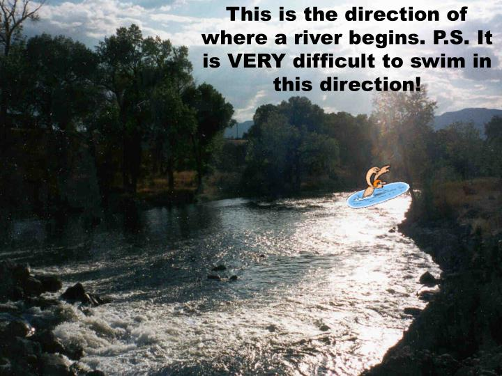 This is the direction of where a river begins. P.S. It is VERY difficult to swim in this direction!