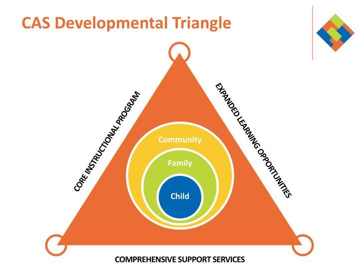 CAS Developmental Triangle