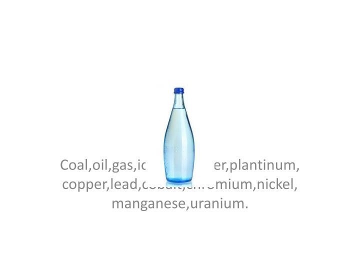 Coal,oil,gas,iornore,water,plantinum,copper,lead,cobalt,chromium,nickel,manganese,uranium.