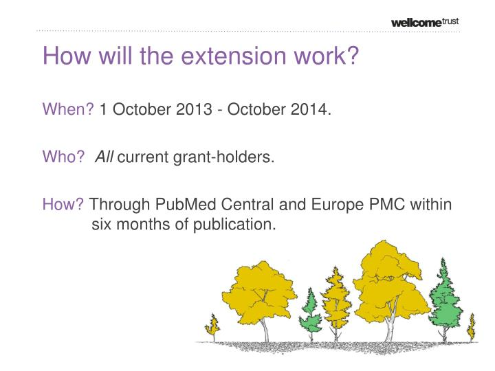 How will the extension work?