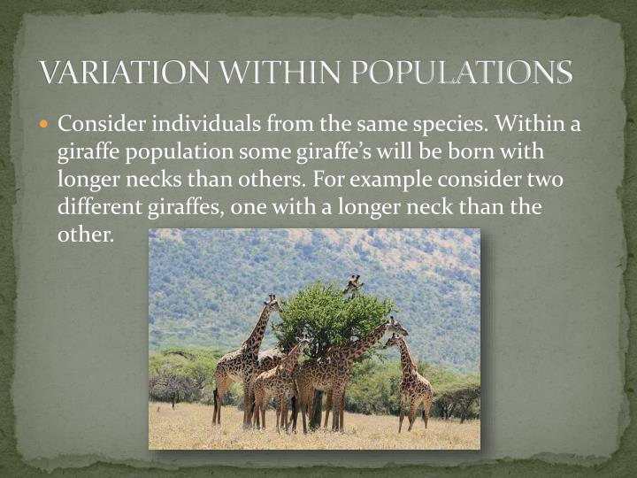 Variation within populations