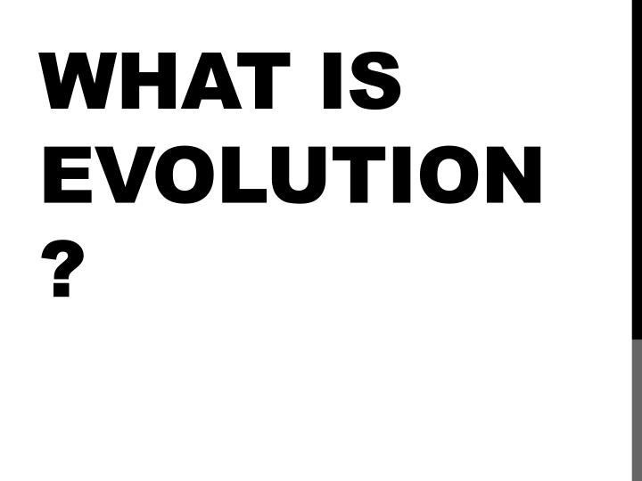 what is evolution n.