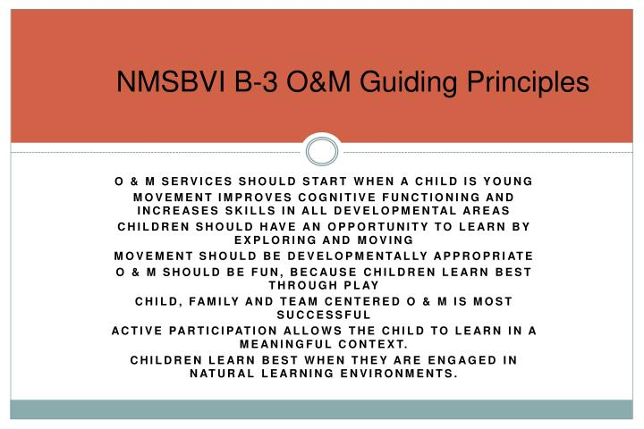 NMSBVI B-3 O&M Guiding Principles
