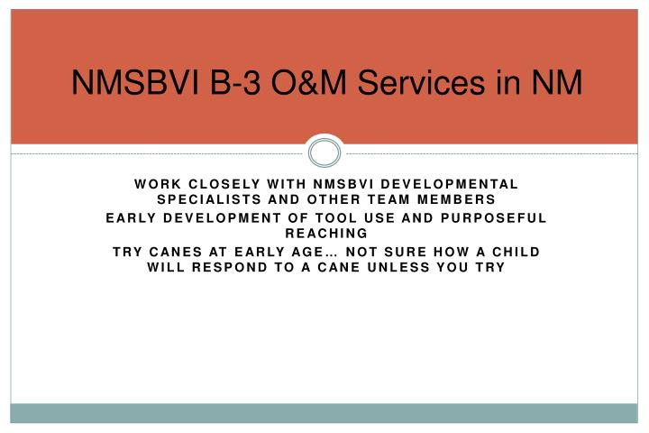 NMSBVI B-3 O&M Services in NM