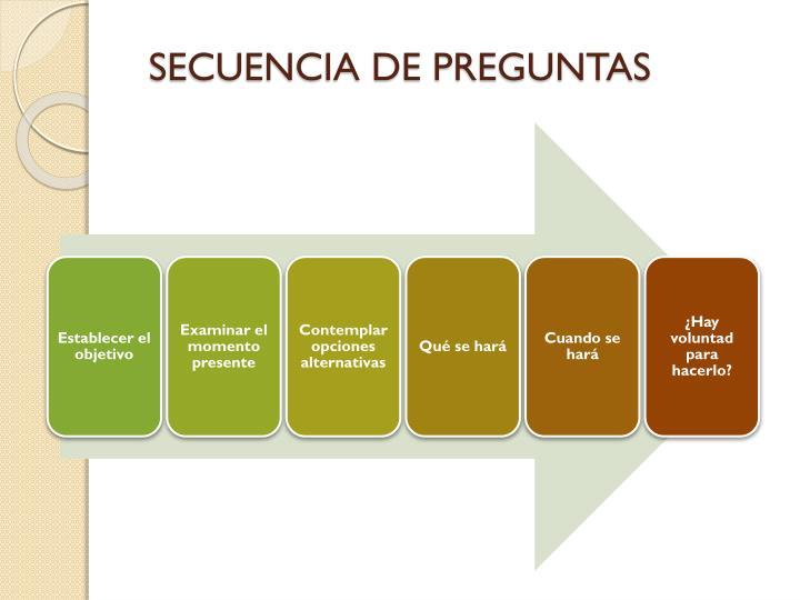 SECUENCIA DE PREGUNTAS