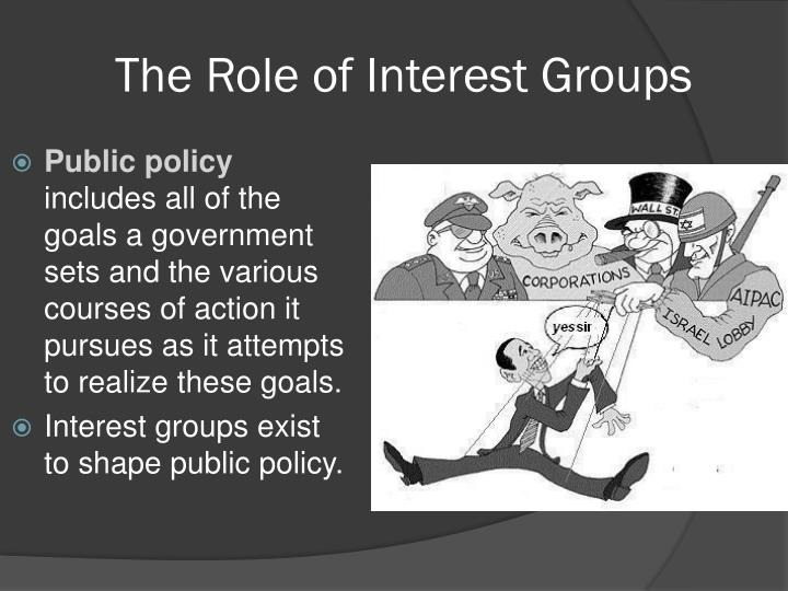 The role of interest groups1