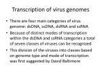 transcription of virus genomes