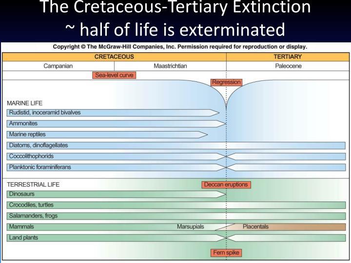 The Cretaceous-Tertiary Extinction