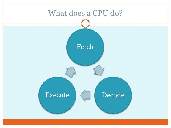 What does a CPU do?