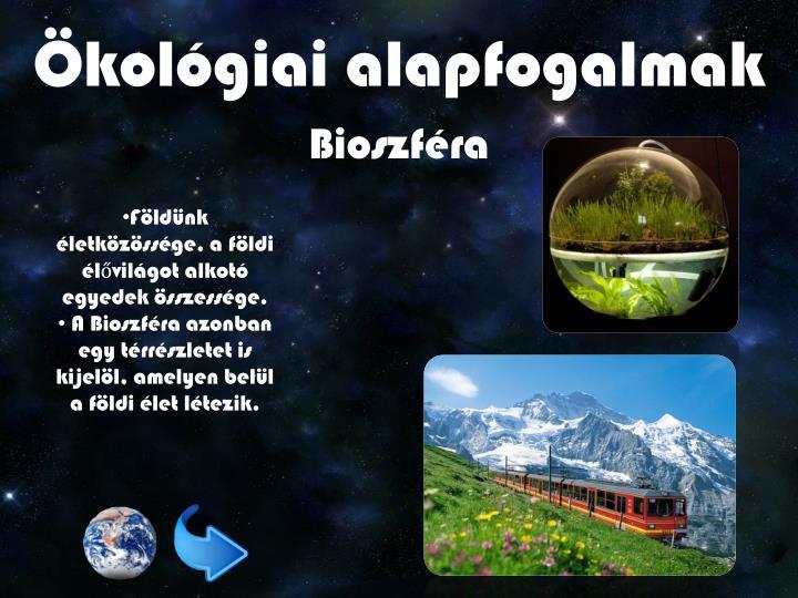 Ökológiai alapfogalmak
