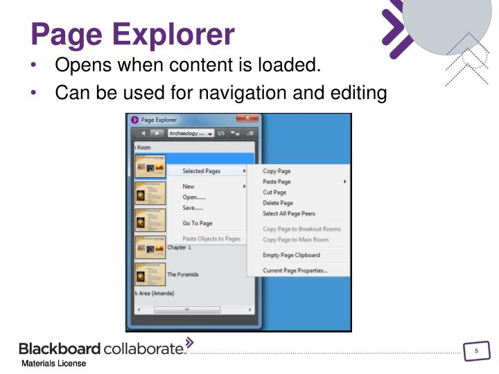 Page Explorer