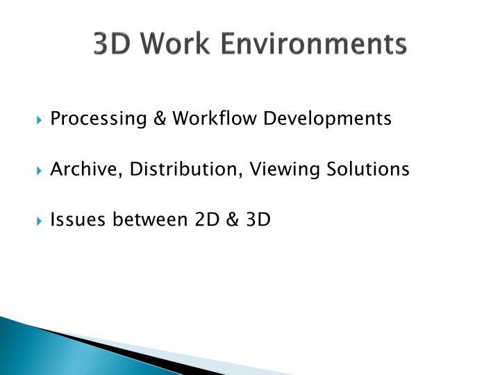 3d work environments1