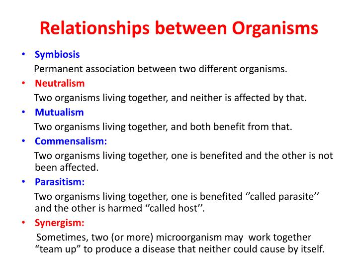 Relationships b etween organisms