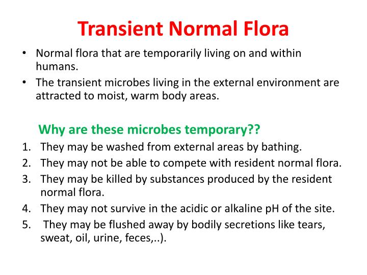 Transient Normal Flora