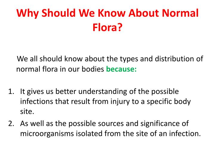 Why Should We Know About Normal Flora?