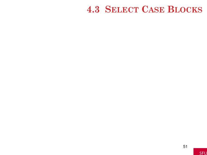 4.3  Select Case Blocks