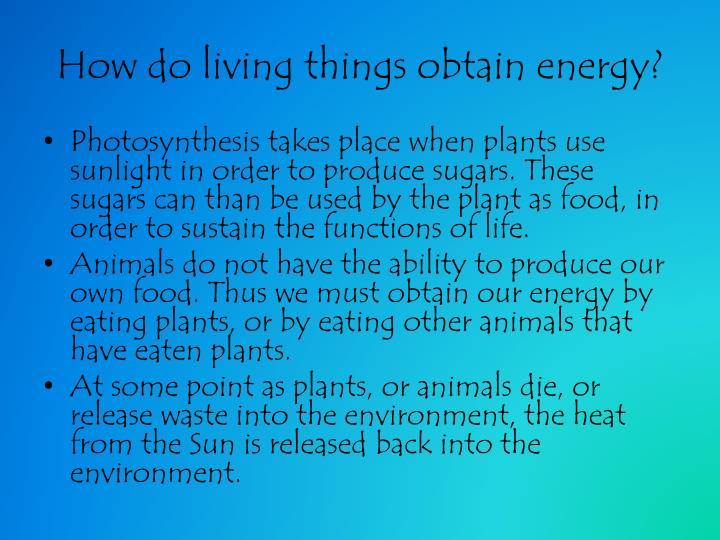 How do living things obtain energy?