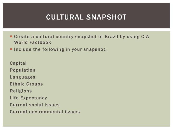 Cultural snapshot