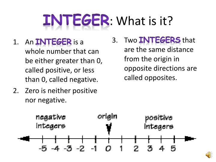 Integer what is it