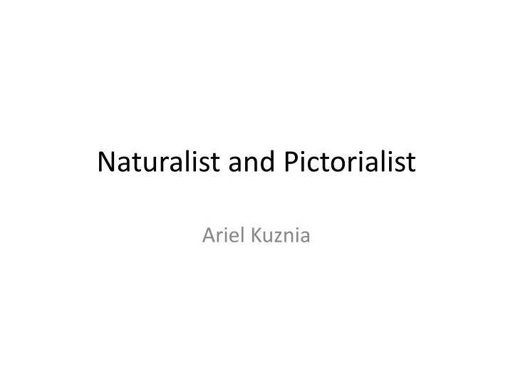 naturalist and pictorialist n.