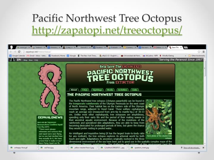 Pacific Northwest Tree Octopus