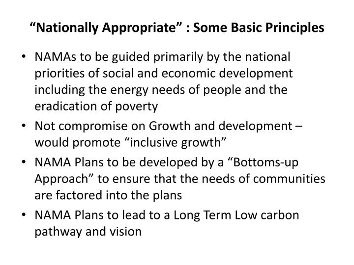Nationally appropriate some basic principles