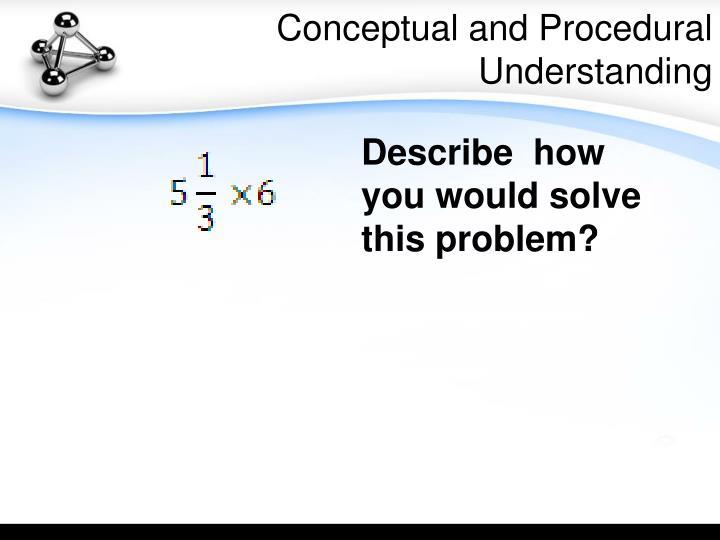 Conceptual and Procedural Understanding