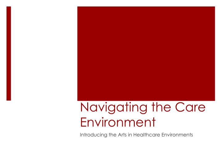 Navigating the care environment