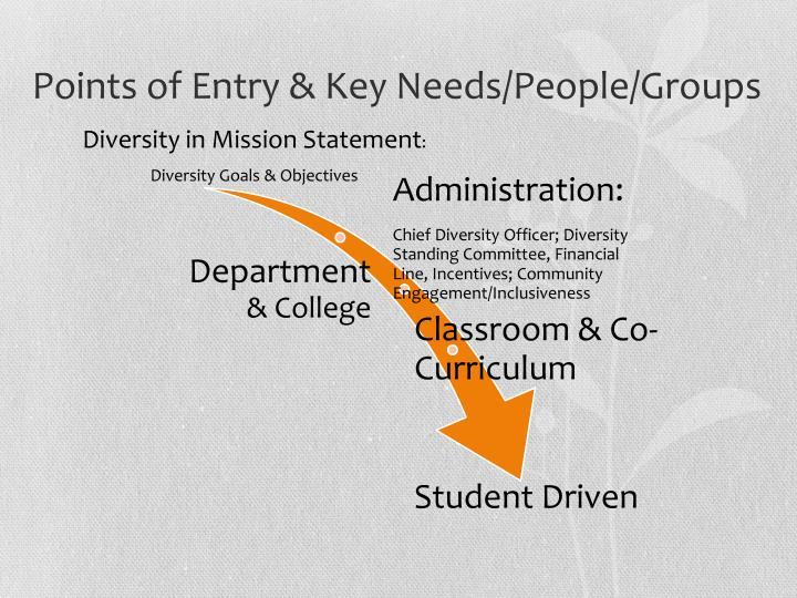 Points of Entry & Key Needs/People/Groups
