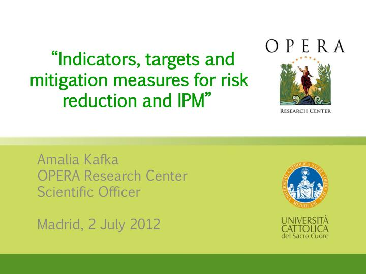 indicators targets and mitigation measures for risk reduction and ipm n.